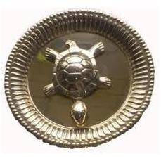 metalturtlewithplate